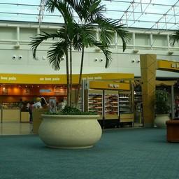 アメリカ Fl オーランド空港 風景 海外 無料写真素材 あみラボ