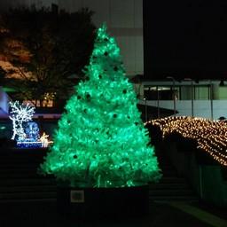 クリスマスツリー 画像 素材 無料 無料アイコンダウンロードサイト