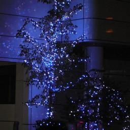 埼玉県越谷市 南越谷 電飾 無料写真素材 あみラボ