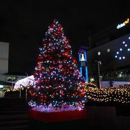 クリスマス ツリー 画像 素材 Matamukon